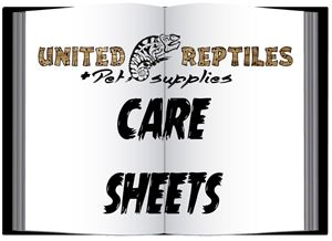 Picture for category Care Sheets