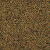 Picture of Tetrapro Algae