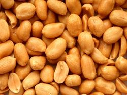 Picture of Westerman's Unshelled Peanuts