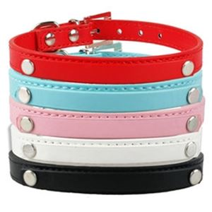 Picture for category Dog Collar