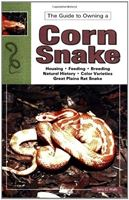 Picture of The Guide to Owning a Corn Snake