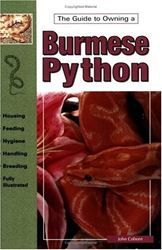 Picture of The Guide to Owning Burmese Pythons