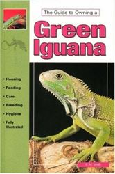 Picture of The Guide to Owning a Green Iguana