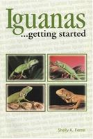 Picture of Iguanas....Getting Started
