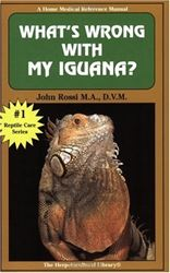 Picture of What's Wrong with My Iguana?