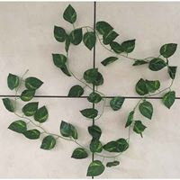 Picture of Repti Decor Green Vine 2
