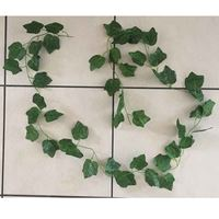 Picture of Repti Decor Green Vine 4