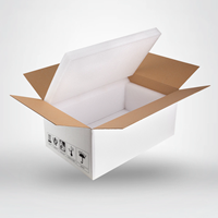 Picture of Insulated Shipping Box