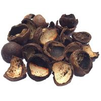 Picture of Macadamia Nut Shells