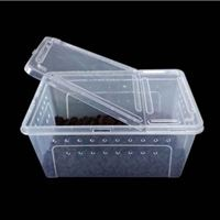 Picture of Transparent Plastic Box  (Medium) 26 x 17.5 x 11.5 cm