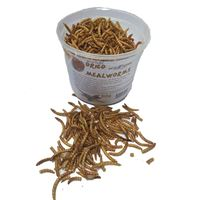 Picture of Freeze Dried Meal Worms - Tub