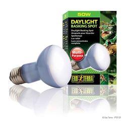 DAYLIGHT BASKING SPOT LAMP PT2131 - R20/50W