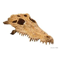 Exo-Terra - CROCODILE SKULL / SECURE HIDING PLACE