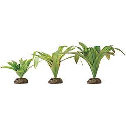 Exo-Terra - BROMELIA - SMART PLANT / DART FROG PLANT