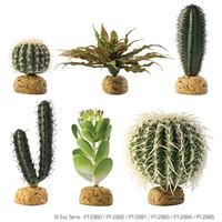 Exo-Terra - DESERT GROUND PLANTS