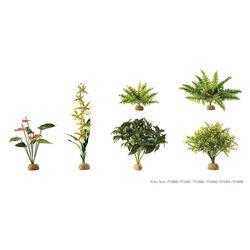 Exo-Terra - RAIN FOREST GROUND PLANTS