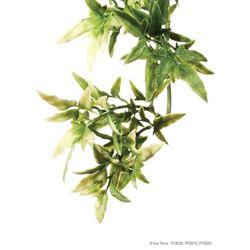 Exo-Terra- Jungle Plant Croton