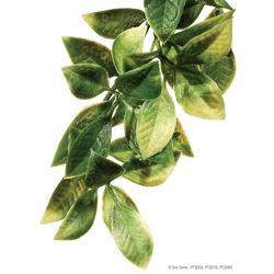 Exo-Terra- Jungle Plant Mandarin