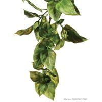 Exo-Terra- Jungle Plant Amapallo