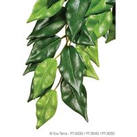Exo-Terra- Jungle Plant Ficus