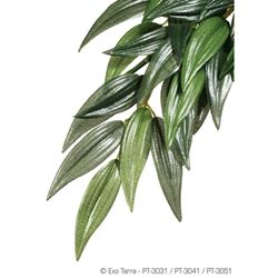 Exo-Terra- Jungle Plant Ruscus