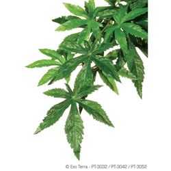 Exo-Terra- Jungle Plant Ambuliton