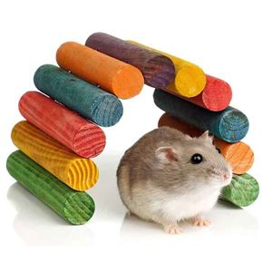 Picture for category Small Pet Toys