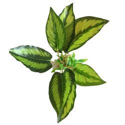 Resin Base Green Variegated Plant