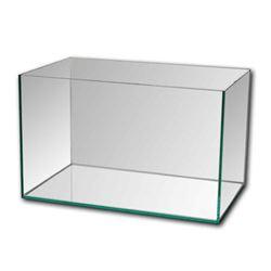 All Glass Aquariums (Local)