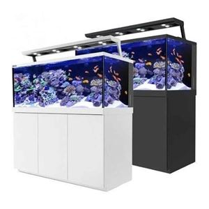 Picture for category Red Sea Aquariums