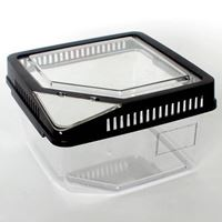 Transparent Plastic Feeder Box H7 (17.7 x 17.7 x 11cm)
