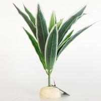 NP Simulation Plant-18