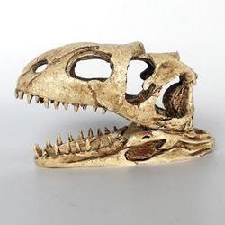 NOMO resin Skull NS-98