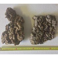 Cork Bark Flat (Small)