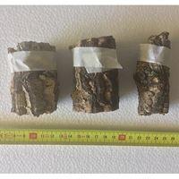 Cork Tubes (Medium