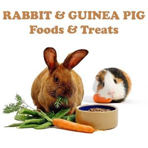 Picture for category Rabbit & Guinea Pig Foods & Treats