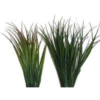 Reeds Base Plant