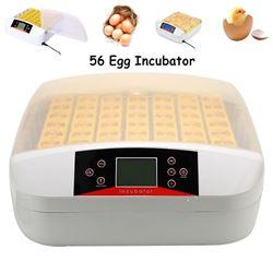 56 Egg Incubator Fully Automatic