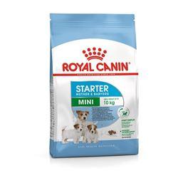 Royal Canin Mini Mother and Babydog Starter Dog Food