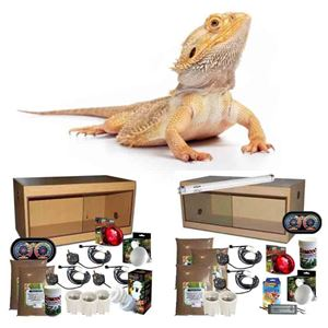 Picture for category Bearded Dragon Complete Kit