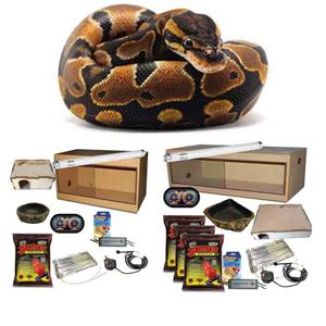 Picture for category Ball Python & Boa Kits