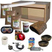 Leopard Gecko Kit Budget 900