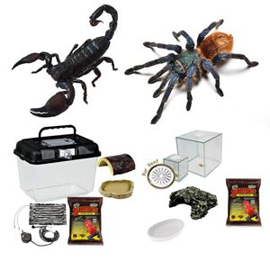 Picture for category Critter Starter Kits