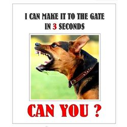 TO THE GATE IN 3 SECONDS, CAN YOU