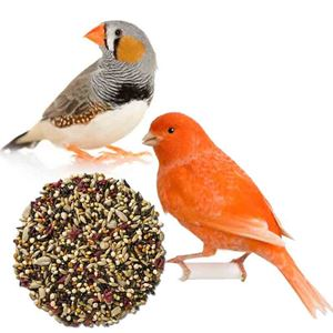 Picture for category Finch & Mix Bird Feeds