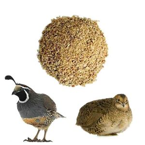 Picture for category Quail Feeds