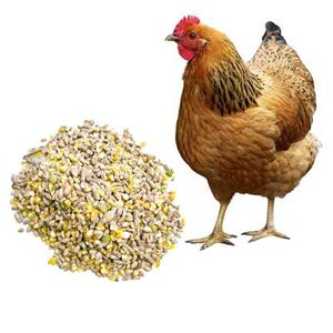 Picture for category Poultry Feeds