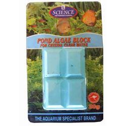 Pond Algae Block - 20g Treats 800L