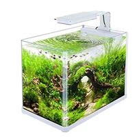 White Water Aquariums