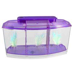 Betta Bow Fish Tank 3 TANK KIT